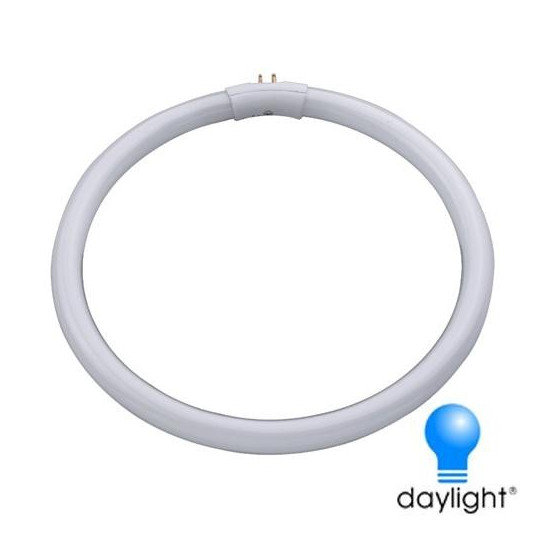 Tube circulaire Daylight? à économie d'énergie de 28W