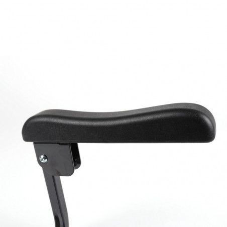 Accoudoirs pour scooter Luggie