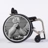 Flasque fauteuil roulant Bras de fer