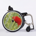 Flasque fauteuil roulant Poppy