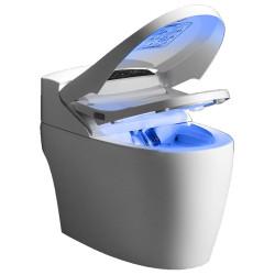 WC lavant monobloc Platinium 2