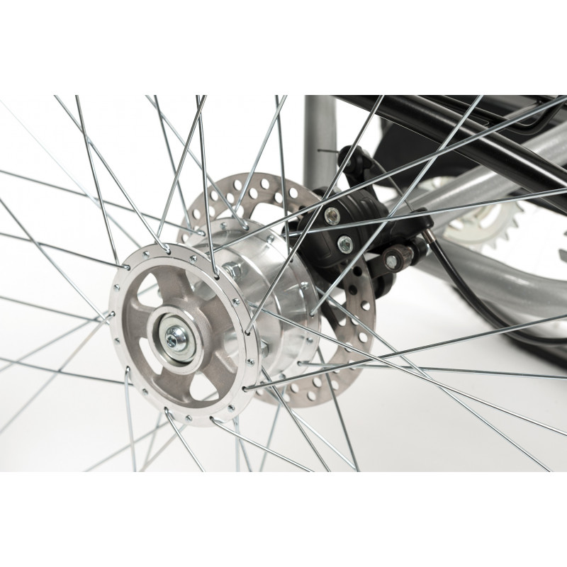 Pignon libre + option 3 vitesses tricycle Lagoon