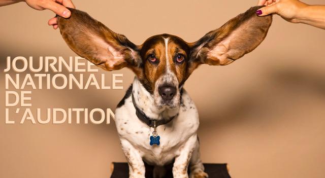 audition tousergo jna problèmes auditifs